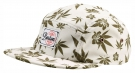 HUNTINGTON Cap 2015 aloha weed
