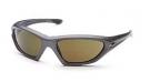 STANCE Sonnenbrille graphite/TG15