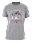 KAMBIZM T-Shirt 2015 grey melange